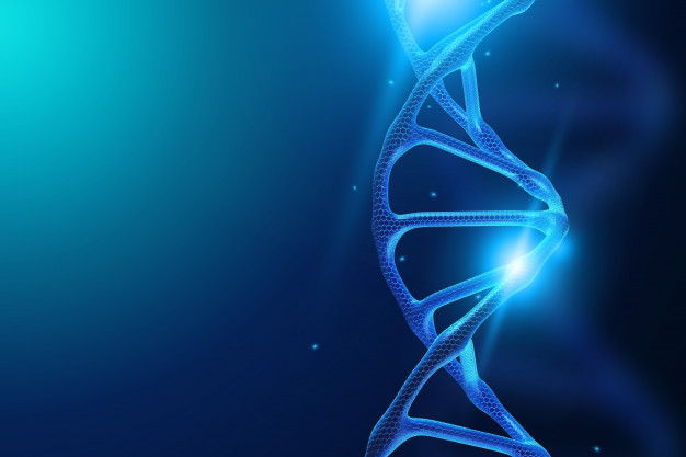 трансплантация на стволови клетки