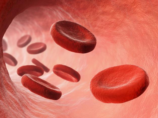 кръвоносен съд за емболизация