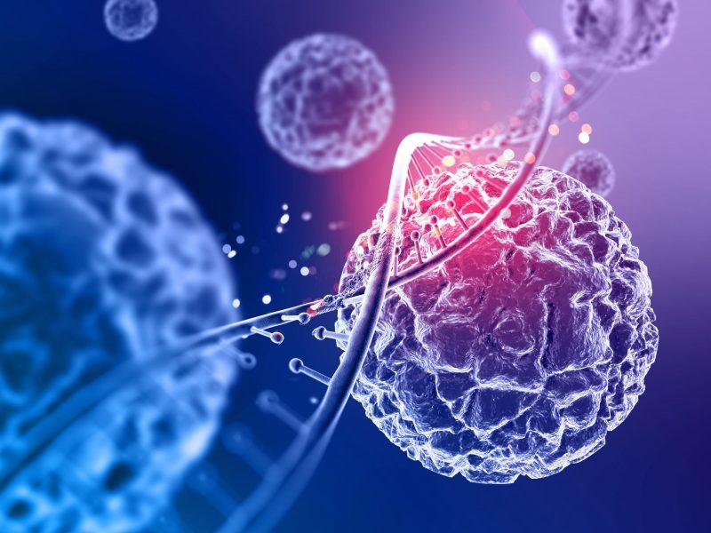 ракова клетка здрава клетка разлики
