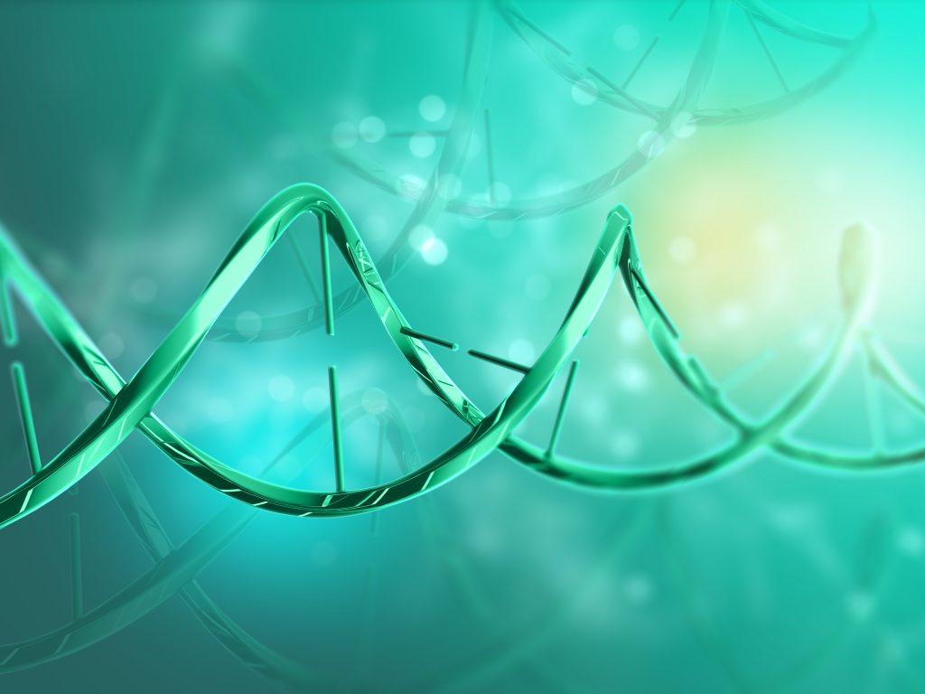 ДНК ракова клетка